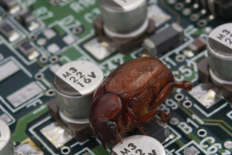 Черепашка компьютера стоковое изображение