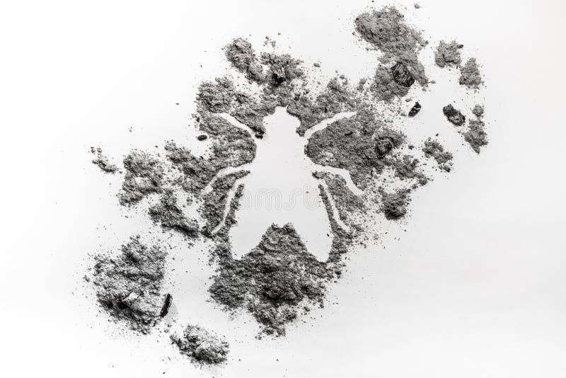 Черепашка силуэта насекомого мухы, надоедать и раздражать сделанная из пыли стоковые изображения rf