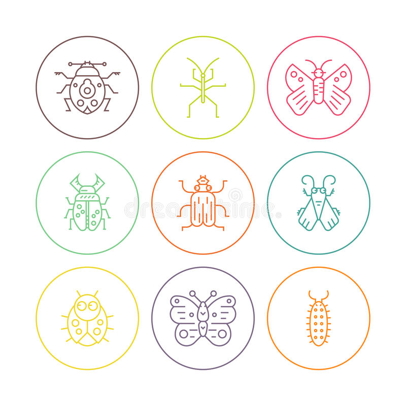 Черепашки в кругах иллюстрация штока