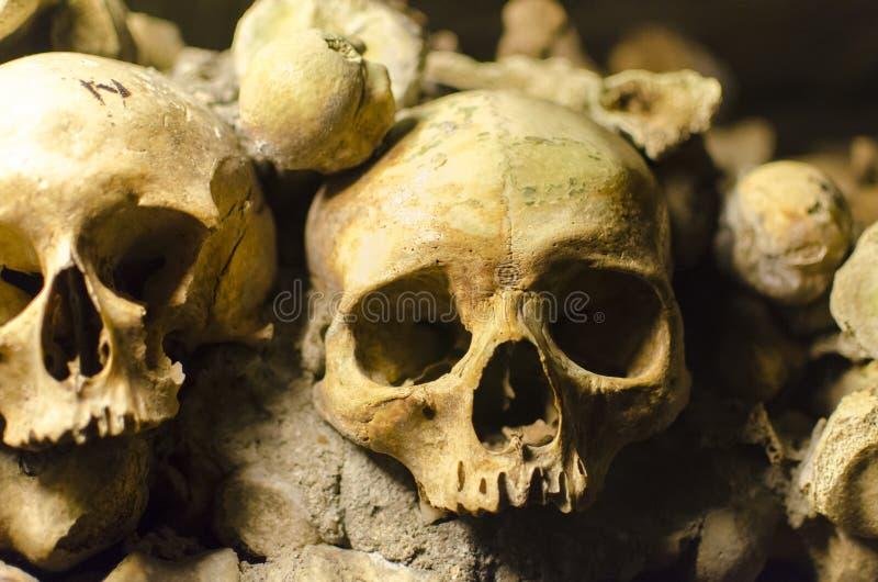 Черепа катакомб Парижа стоковое фото