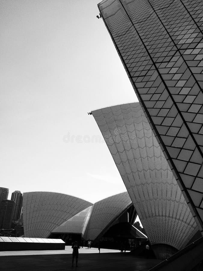 Черепицы оперного театра Сиднея закрывают вверх в черно-белом, Австралия иллюстрация вектора