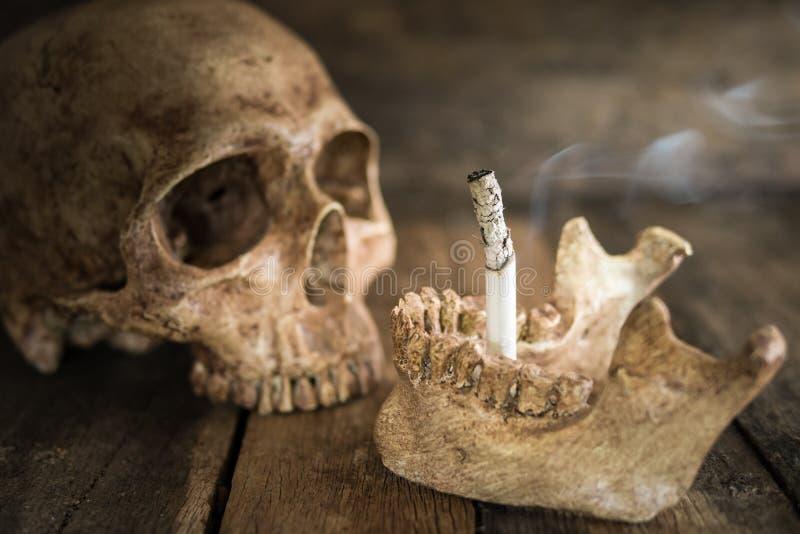 Череп и сигарета натюрморта сгорели дым на древесине стоковая фотография rf