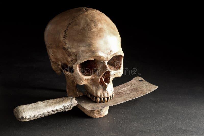 Череп с старым ножом стоковые фото