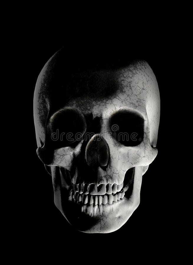 череп иллюстрация штока