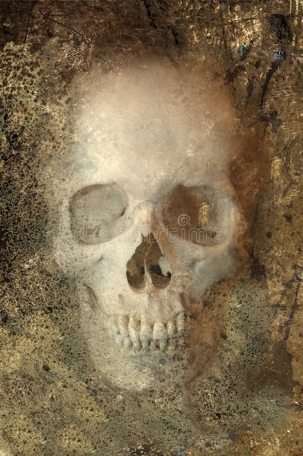 череп grunge стоковое фото