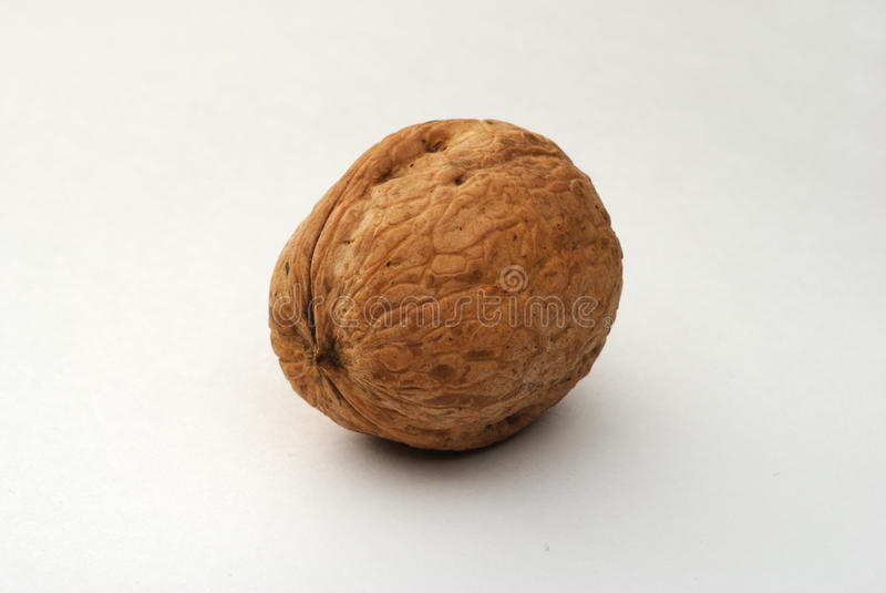 черкесский грецкий орех стоковое изображение
