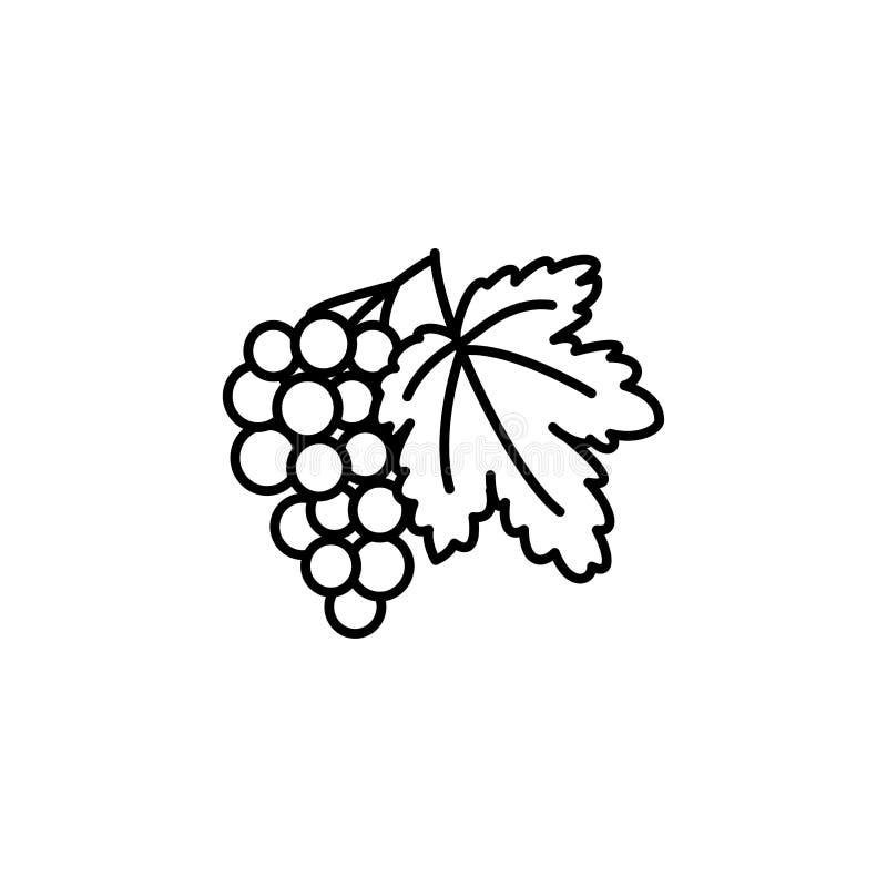 Черная & белая иллюстрация вектора плодоовощ виноградины с лист линия иллюстрация штока