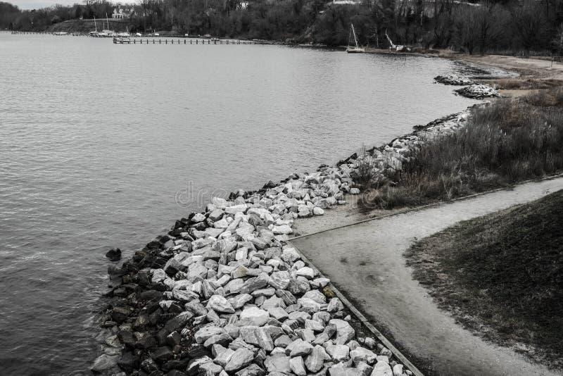 Черная & белая сцена скалистого бечевника и лесистого пляжа стоковое изображение rf