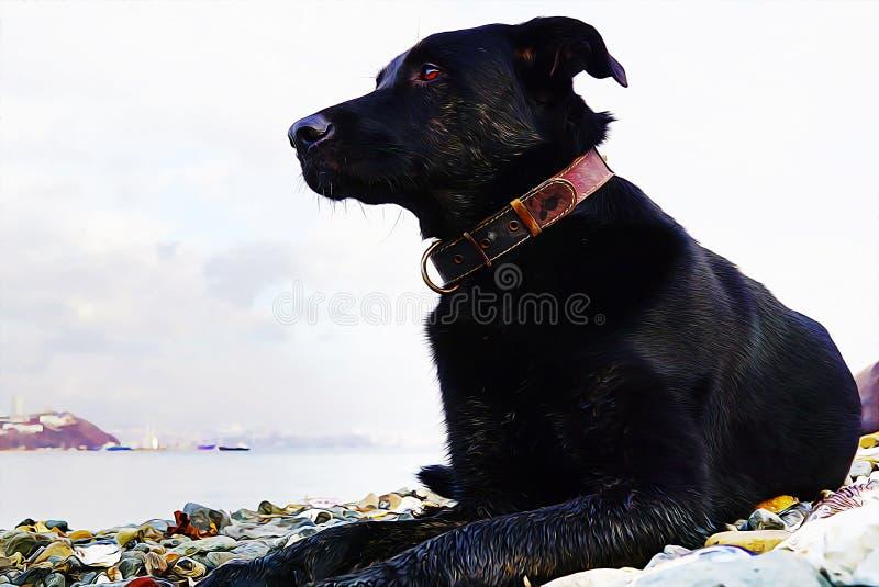 Черная большая собака с ярким глазом на предпосылке залива моря России изображение картины маслом иллюстрация штока