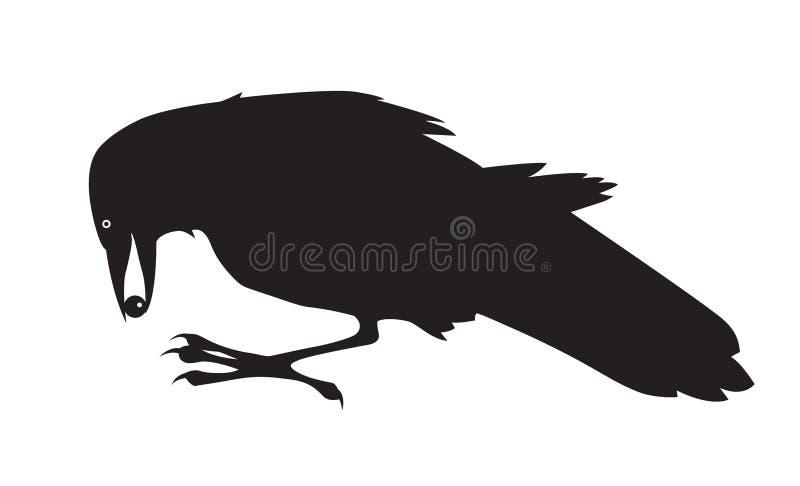 Черная ворона находя шарик иллюстрация вектора