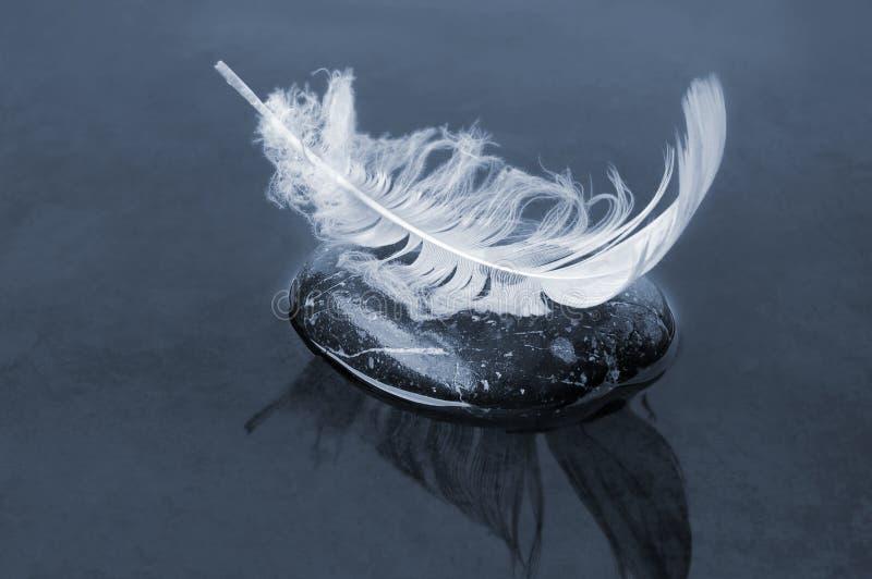 черная вода пера стоковое фото