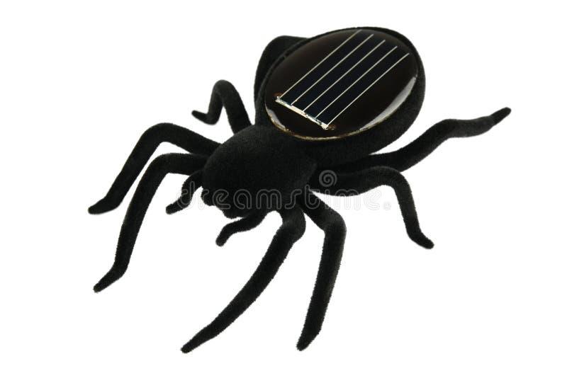 Черная игрушка паука для детей стоковое изображение rf