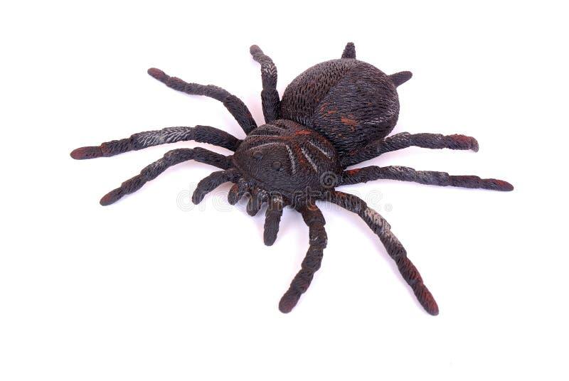 черная игрушка спайдера стоковое изображение