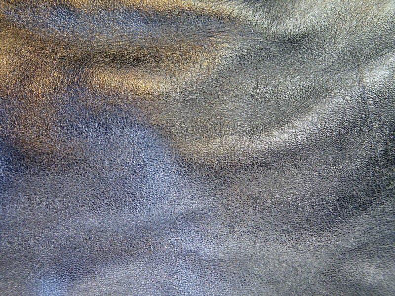 черная кожа стоковая фотография