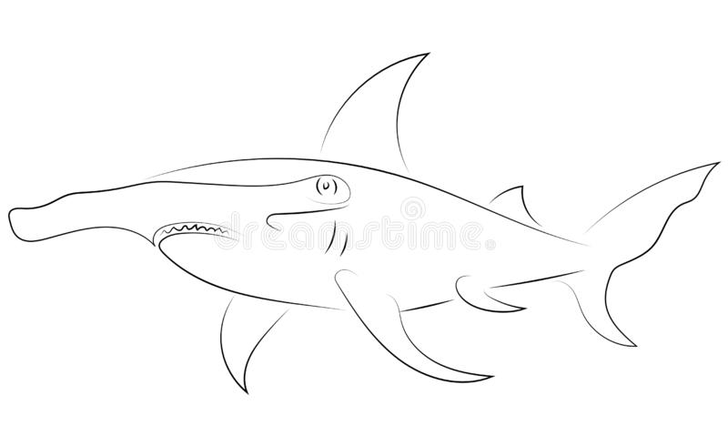 Черная линия акулы молота на белой предпосылке Чертеж v руки иллюстрация штока