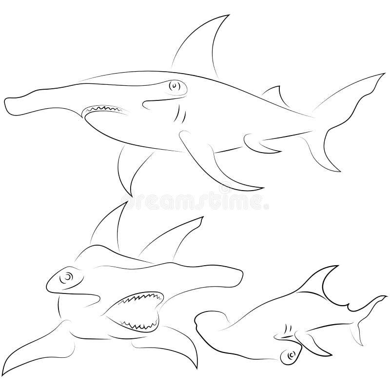 Черная линия акулы молота на белой предпосылке Чертеж v руки иллюстрация вектора