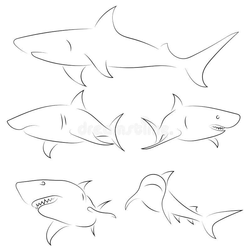 Черная линия акулы на белой предпосылке Эскиз руки вычерченный линейный иллюстрация штока