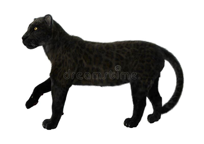 черная пантера бесплатная иллюстрация