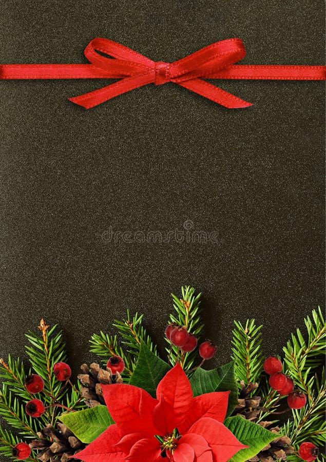 Черная предпосылка рождества с хворостинами ели и красной лентой bo стоковая фотография