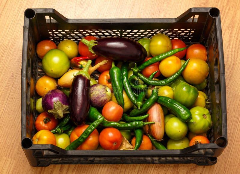 Черная пластичная коробка с свежими овощами стоковое изображение