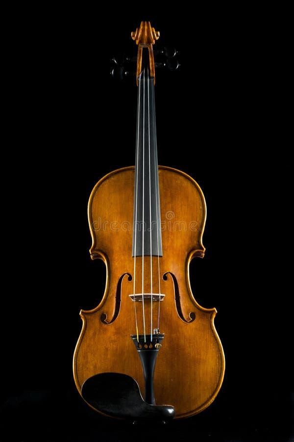 черная скрипка стоковые фото