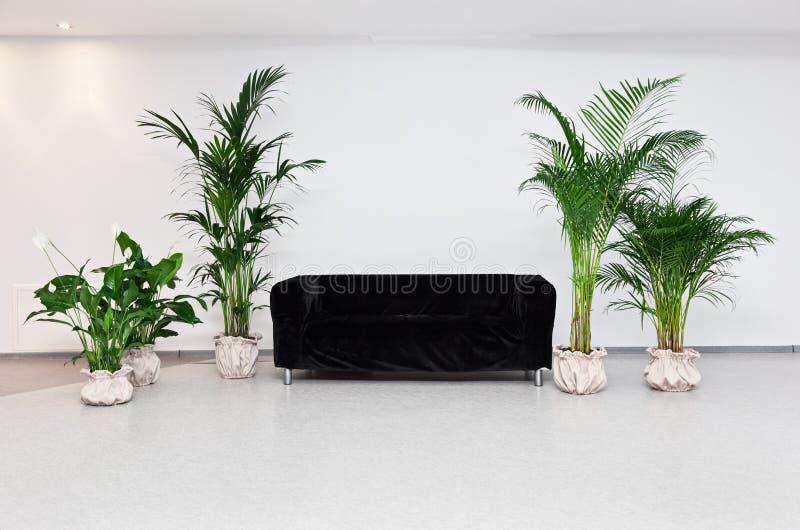 Черная софа в самомоднейшем интерьере minimalism стоковое фото