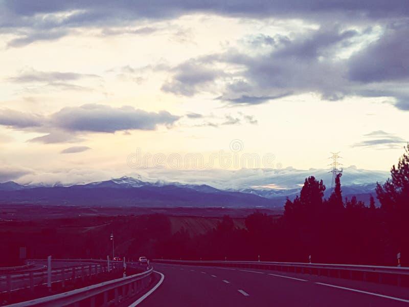 черник Испания стоковые фотографии rf
