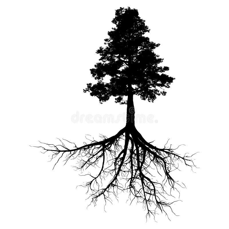 Черное дерево с корнями иллюстрация штока