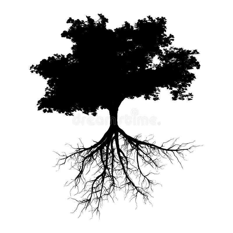 Черное дерево с корнями иллюстрация вектора