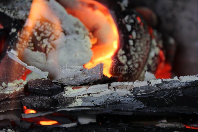 Черное деревянное пламя стоковые изображения rf
