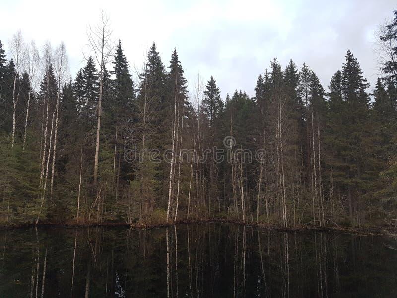 Черное озеро стоковые изображения