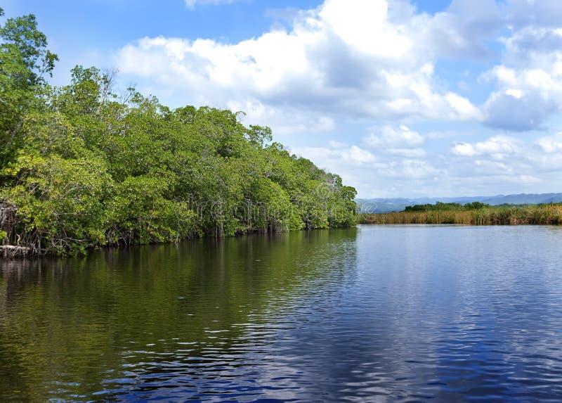 Черное река Ямайка. стоковая фотография rf