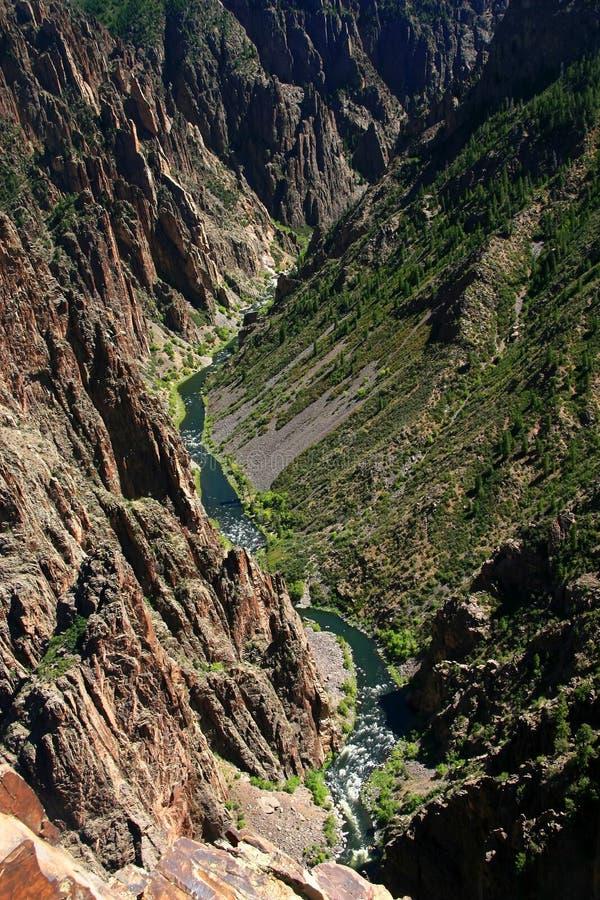черное река gunnison каньона стоковая фотография