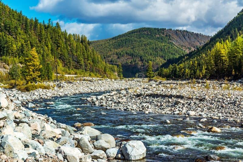 Черное река Irkut в горах Sayan стоковые изображения rf