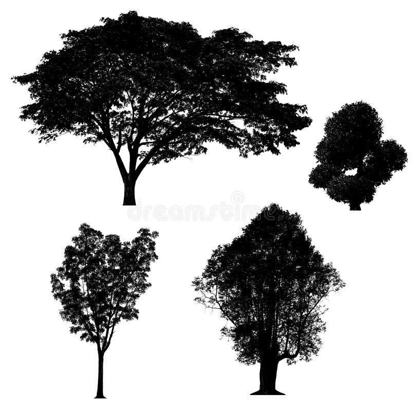 Черное собрание силуэтов дерева изолированное на белой предпосылке иллюстрация штока