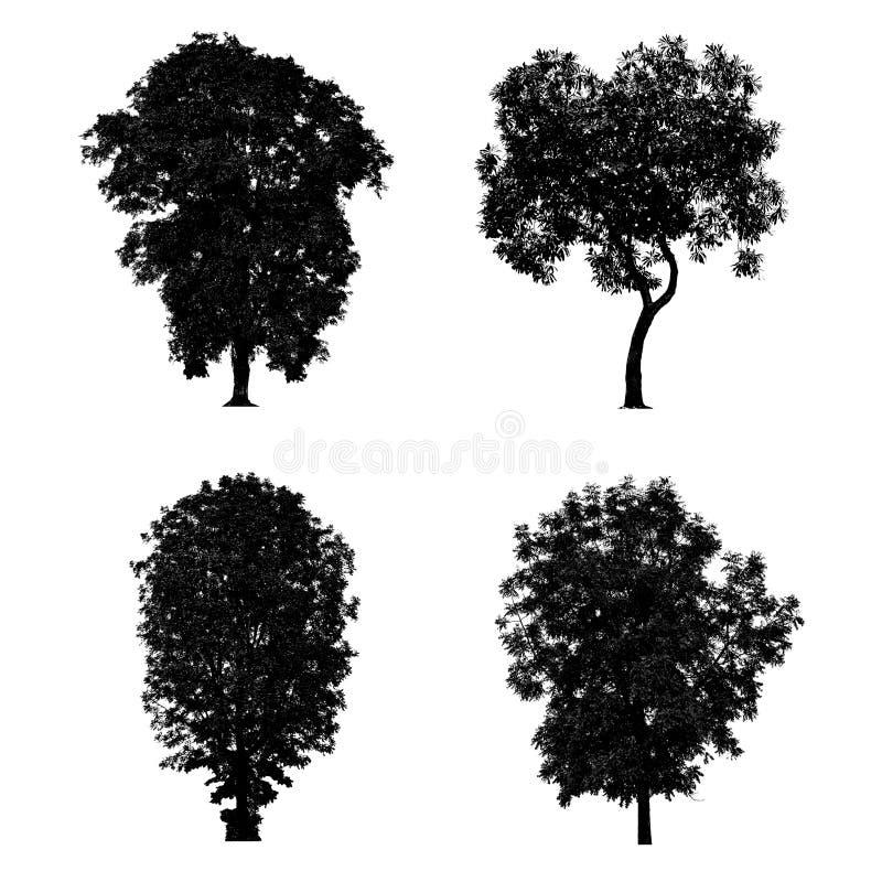 Черное собрание силуэтов дерева изолированное на белой предпосылке стоковая фотография