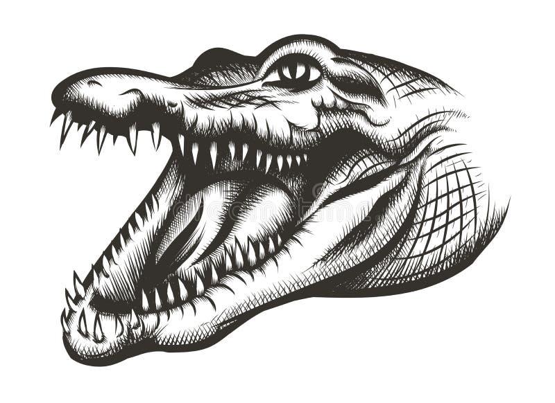 Чернота крокодила головная иллюстрация вектора