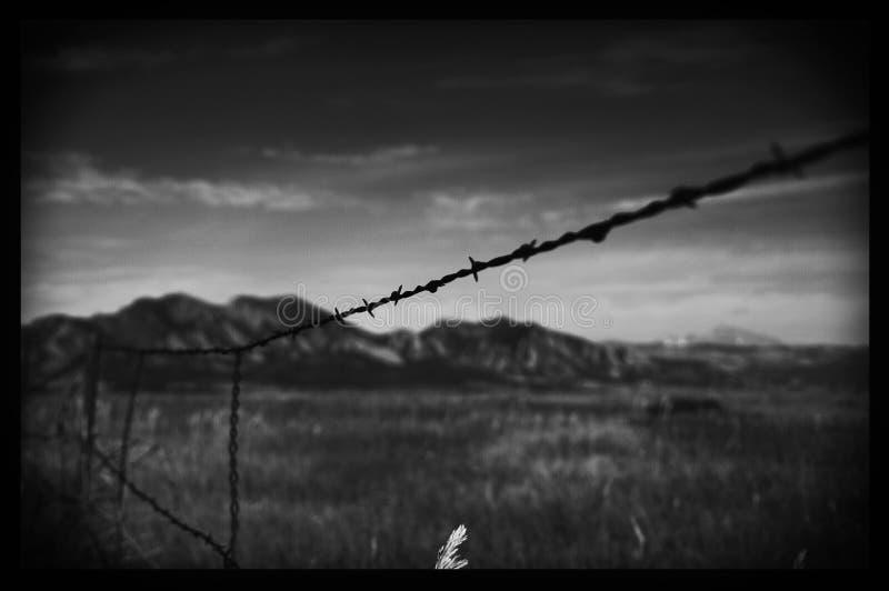 Черно-белая загородка колючей проволоки с запачканной предпосылкой стоковое фото rf