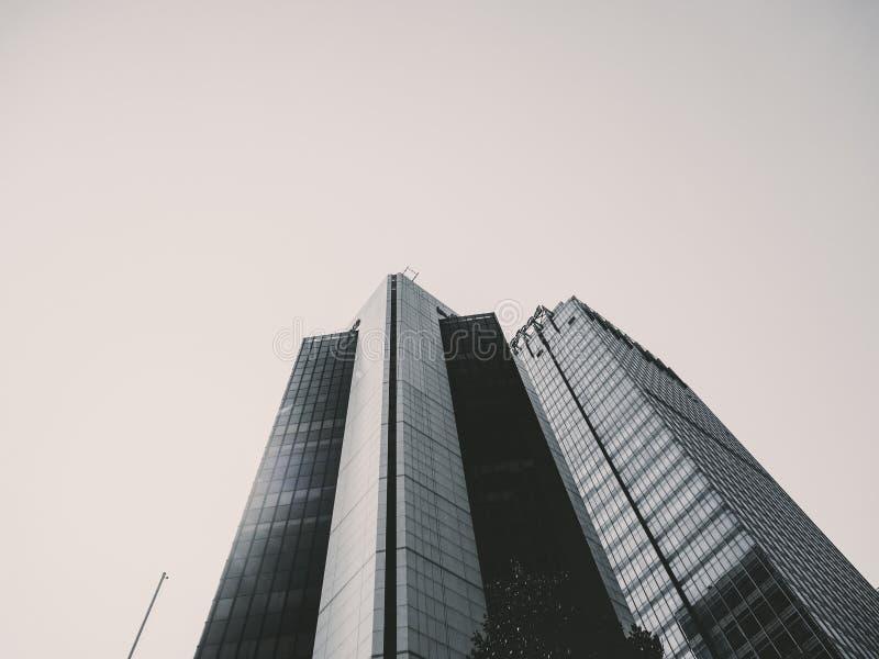Черно-белое здание от взгляда низкого угла стоковое фото