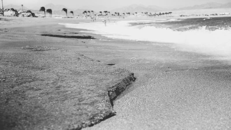 Черно-белое изображение красивого песочного пляжа моря и океанские волны ломая на береге стоковое фото