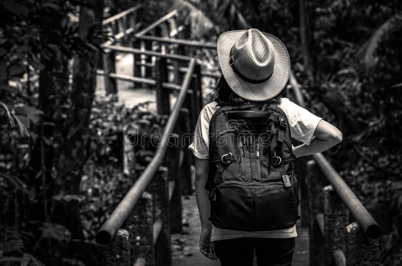 Черно-белое фото азиатского туриста женщины с шляпой и положением и стартом рюкзака идя на мост следа природы в вечнозелёном раст стоковые фото