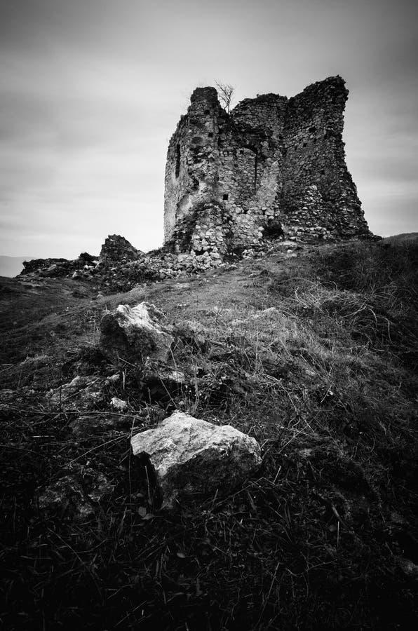 Черно-белые руины замка стоковая фотография