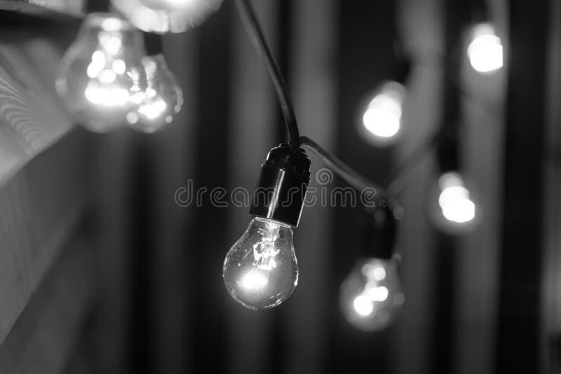 Черно-белые электрические лампочки стоковые фотографии rf