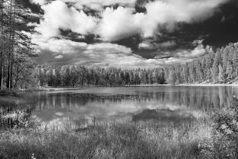 Черно-белый взгляд облаков которые отражены в озере, Punkaharju, район озера, Финляндия стоковое фото rf