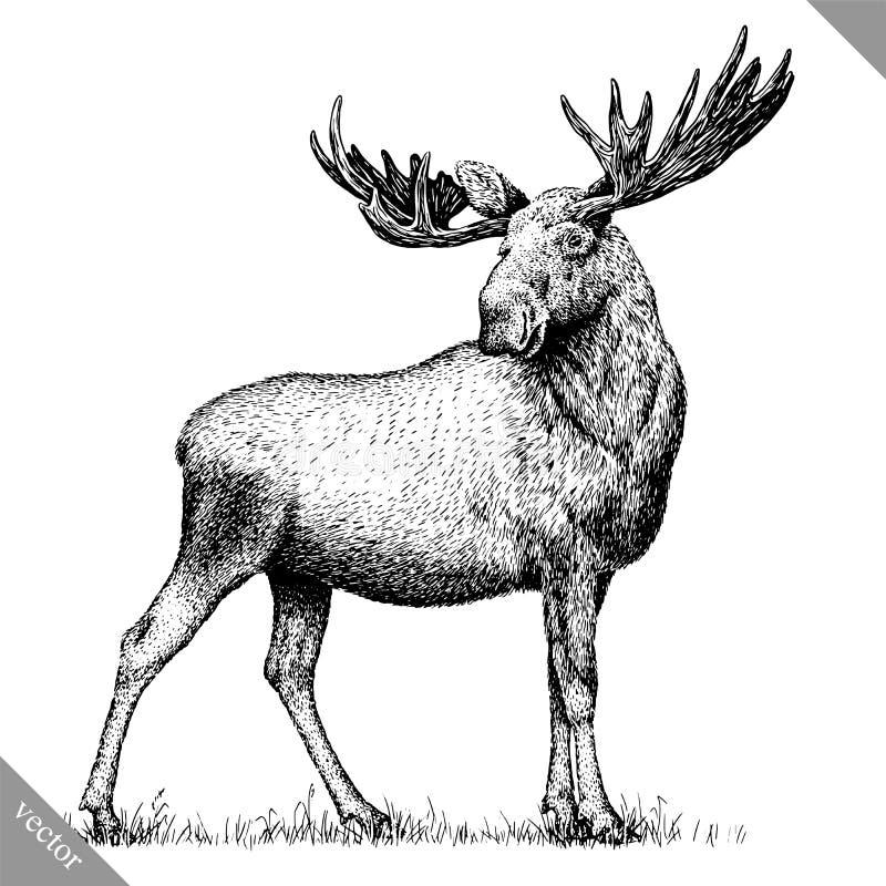 Черно-белый выгравируйте изолированную иллюстрацию вектора притяжки руки лося бесплатная иллюстрация