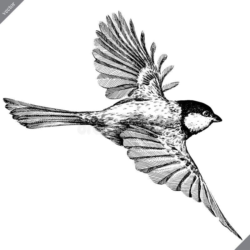 Черно-белый выгравируйте изолированную иллюстрацию вектора синицы бесплатная иллюстрация