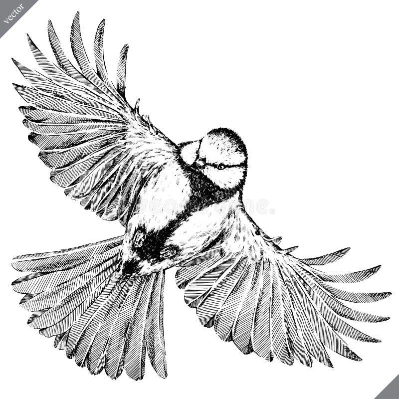Черно-белый выгравируйте изолированную иллюстрацию вектора синицы иллюстрация вектора