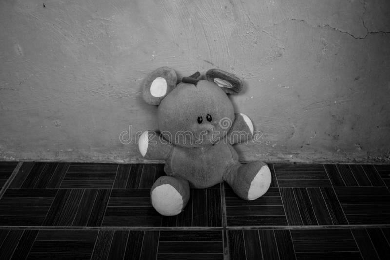 Черно-белый портрет изолированной пушистой плюшевого мишки игрушки стоковые фото