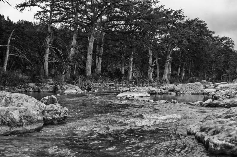 Черно-белая monochrome централь Техас реки Frio стоковое изображение rf