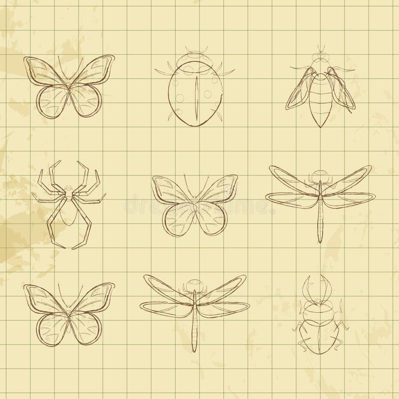Черно-белые насекомые бесплатная иллюстрация